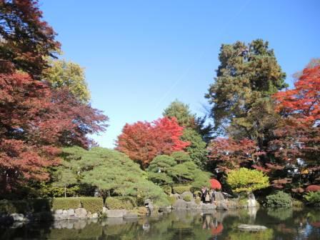 もみじ公園 知事ブログ用写真② DSCN4808