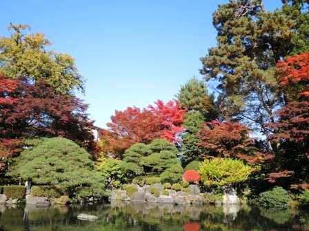 もみじ公園 ブログ用写真① DSCN4811