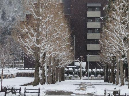 圧縮 雪景色③