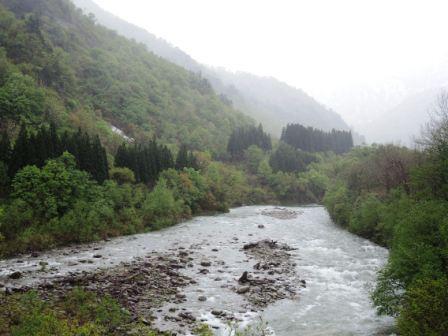川入荘からの川の景色