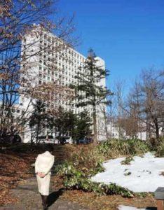 残雪と県庁